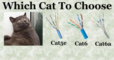 Cat Ethernet Cable choices. What Cat cable for your business